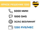 ЯРКОЕ РЕШЕНИЕ 1250