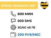 ЯРКОЕ РЕШЕНИЕ 300